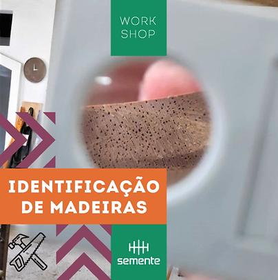 ID_Midias-Sociais_Identificação-de-madei