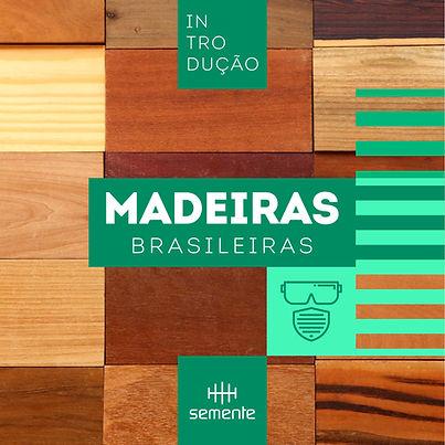 curso de marcenaria que aborda madeiras brasileiras e suas caracterísitcas
