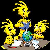 bird%20education_edited.png