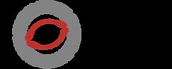 PlatinumPeek_Logo.png