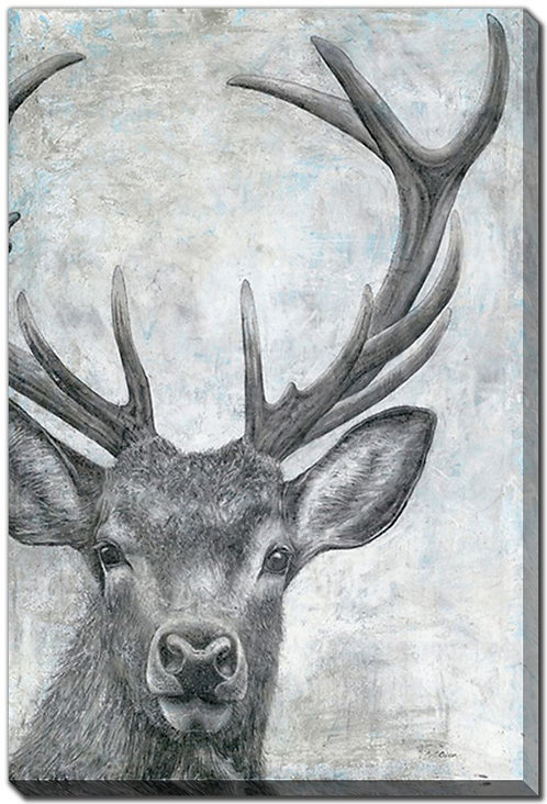 Portrait of a Deer (PAY NO TAX)