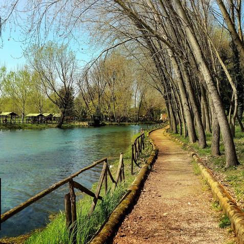 Grassano's Park 11.jpg
