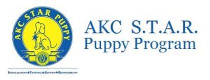 star_puppy_program-300x115.jpg