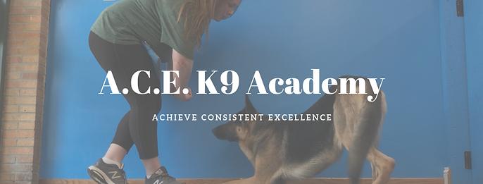 A.C.E K9 Academy (1).png