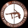 Pole Dance Trainer Ausbildung