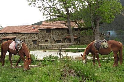 Paseos a caballo por el Pirineo desde Can Gasparó hotel rural en Planoles