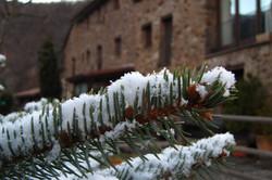 Hotel Can Gasparo - detalles abeto nieve