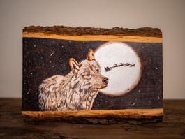 christmas card wolf.jpg