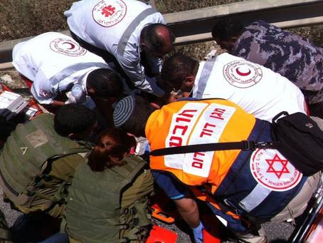MDA e l'operazione Margine Protettivo: 50 giorni di soccorso