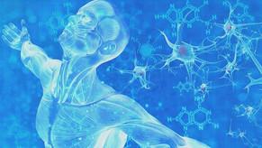 L'ozono terapia riattiva il sistema immunitario - La Verità 13/12/2020