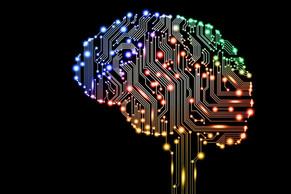 Il cervello gioca in troppi campi (magnetici) - La Verità 13/09/2020