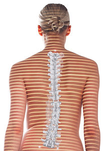 Postura Schiena di donna.jpeg