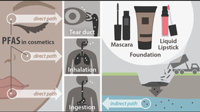 Le insidie chimiche nascoste in cibi e cosmetici - La Verità 05/09/2021
