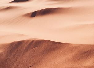 Desert Beg 5-9.png