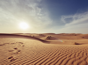 Desert Beg 10-13.png