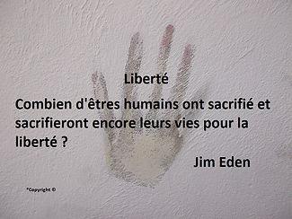 Combien d'êtres humains ont sacrifié et sacrifieront encore leurs vies pour la liberté ? Jim Eden Les Écritures du Cœur https://www.lesecrituresducoeur.com/citation