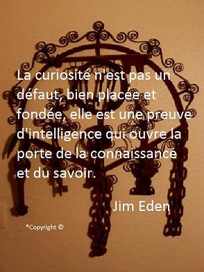 La curiosité n'est pas un défaut, bien placée et fondée, elle est une preuve d'intelligence qui ouvre la porte de la connaissance et du savoir. Jim Eden Les Écritures du Cœur  https://www.lesecrituresducoeur.com/citation