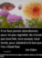 Il ne faut jamais abandonner, pour ne pas regretter de n'avoir pas tout fait, tout essayé, tout tenté pour atteindre le but que l'on s'était fixé. Jim Eden Les Écritures du Cœur https://www.lesecrituresducoeur.com/citation