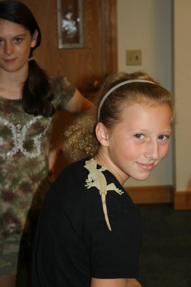 Reptile Adventure
