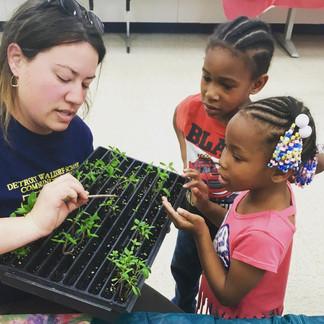 Art of Gardening workshop