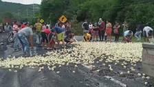 Crisis en Colombia pone en riesgo la vida de 60 millones de aves