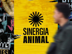 Sinergia Animal launches new visual identity