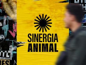 Sinergia Animal lança nova identidade visual