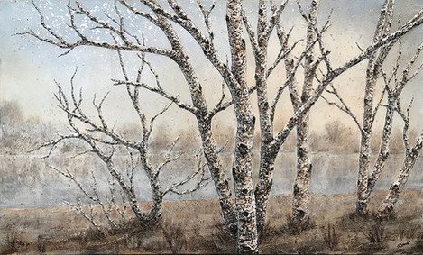 Birches on Indian River