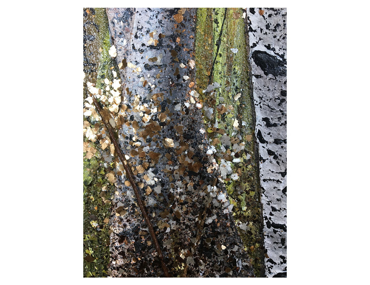 SilverRain_detail02.png