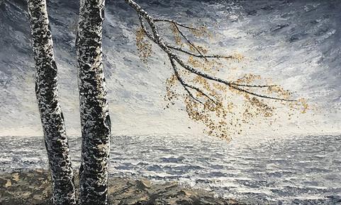 Birches at Lake Superior