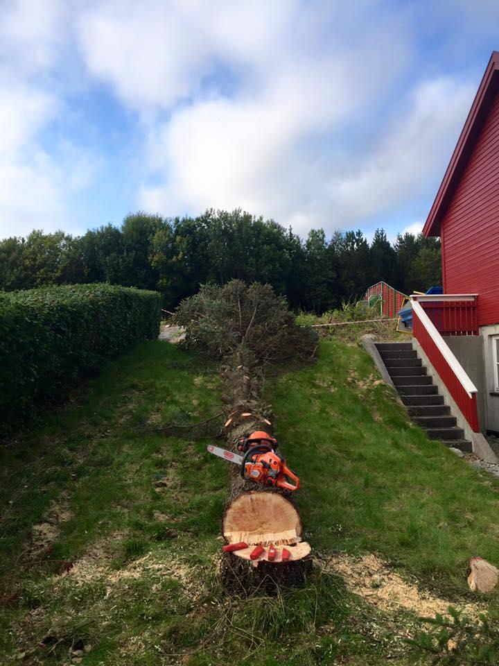 Jobb på Stortua, Kristiansund.