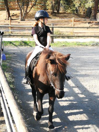 """Hanna und Mauni bei ihrer Prüfung für das """"kleine Islandpferd"""""""