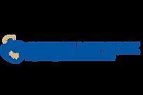 gabriel network logo.png