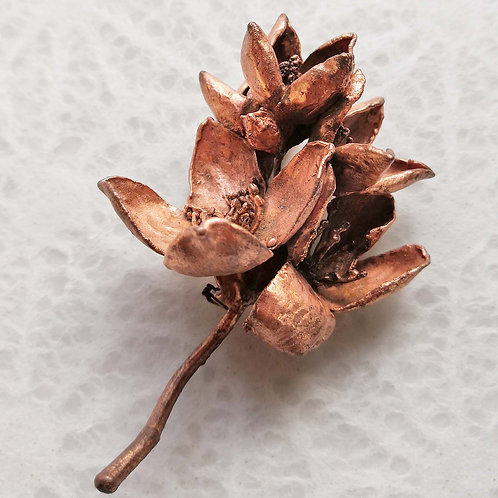 5 fleurs de seringat    broche
