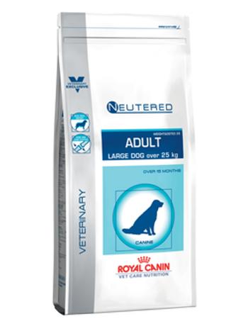 Neutered Adult - Large Dog