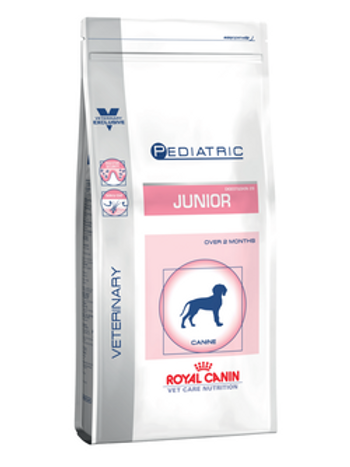 Pediatric Junior Medium Dog