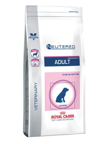 Neutered Adult - Medium Dog