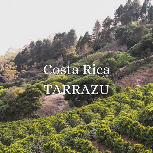 Costa Rica TARRAZU  16oz