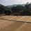 Thumbnail: INDIA - Pearl Mountain Estate 12oz
