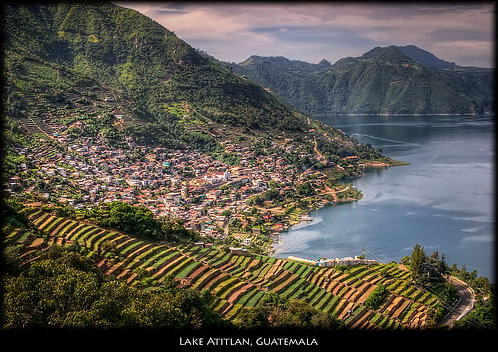 DIRECT TRADE Guatemala Traditional Atitlan   12oz or 5lbs