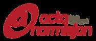LAVKAVALITET Logo Acta Normisjon supplem