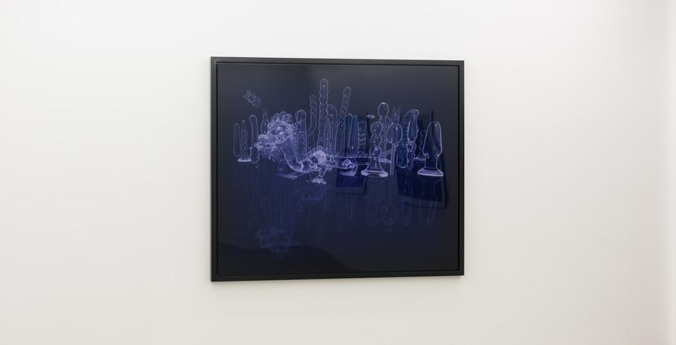 Sleeping Beauty, crystal, 2008, C print, 182.8x152.4cm