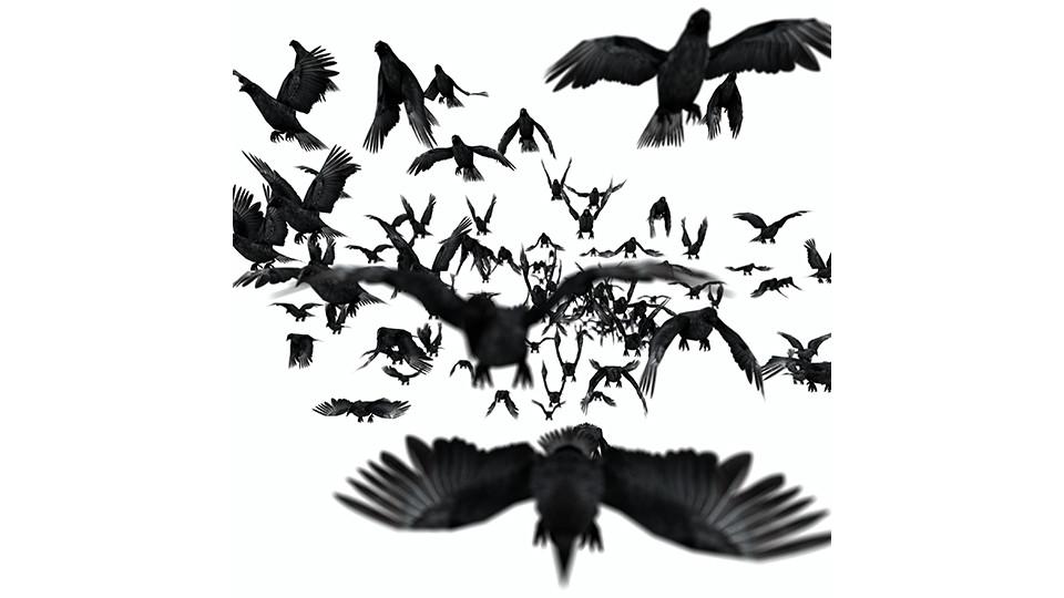 DTIV_JEONG_004 Flying Dust, 2008, digital C-print, 100 x 100 cm