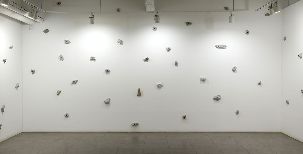 Installation view of Natural Exhibition, Gallery Purple,2019