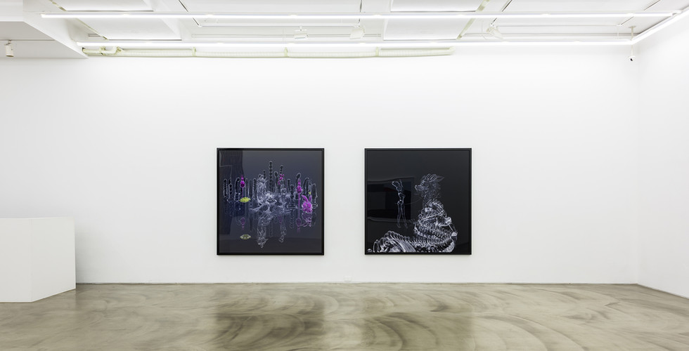 installation view of Arrival, Gallery Simon, 2016