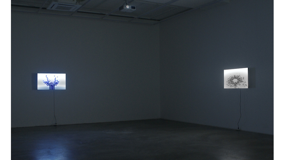 Installation view of Evidence of the Invisible at Gallery Simon, 2012