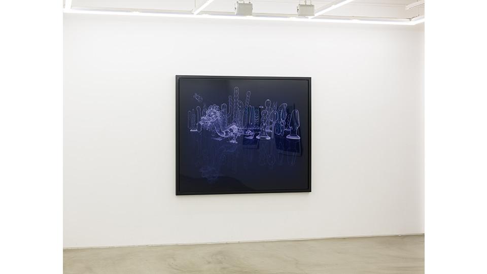 Sleeping Beauty, crystal, 2008, c print, 182.8 x 152.4 cm