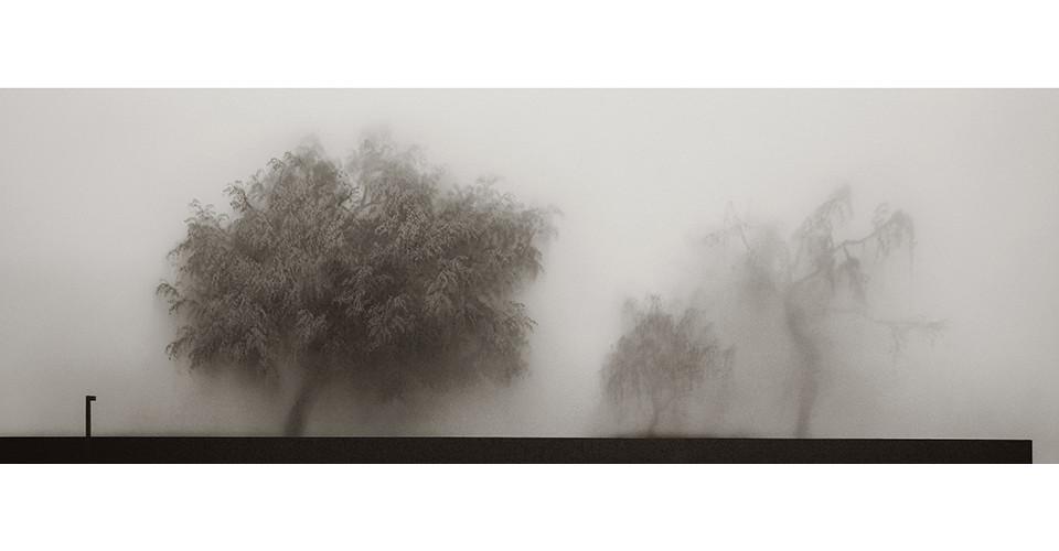 The misty, 2007, plexyglass acrylic canvas, 226 x 80.5 cm