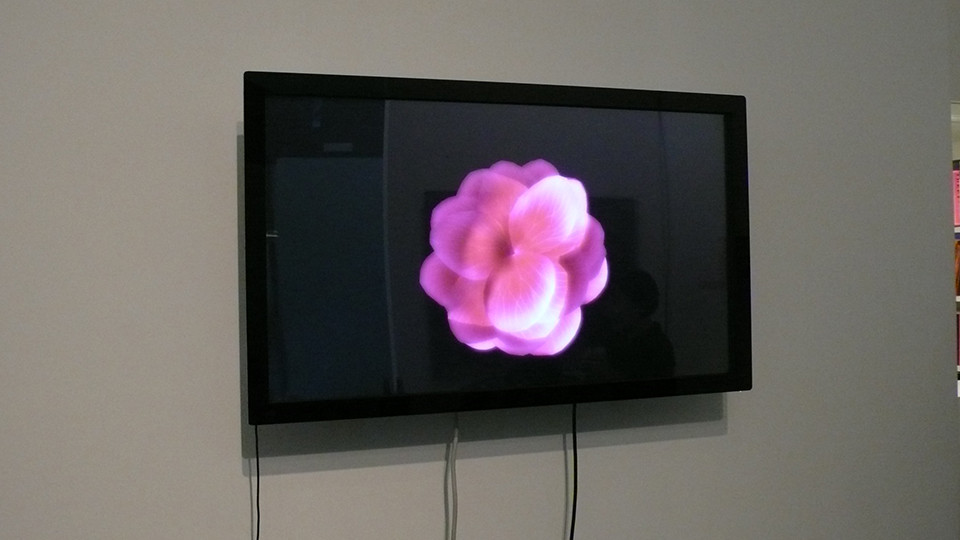 The Flowers, 2008, digital interactive installation, 32 touch scressn monitor, personal software