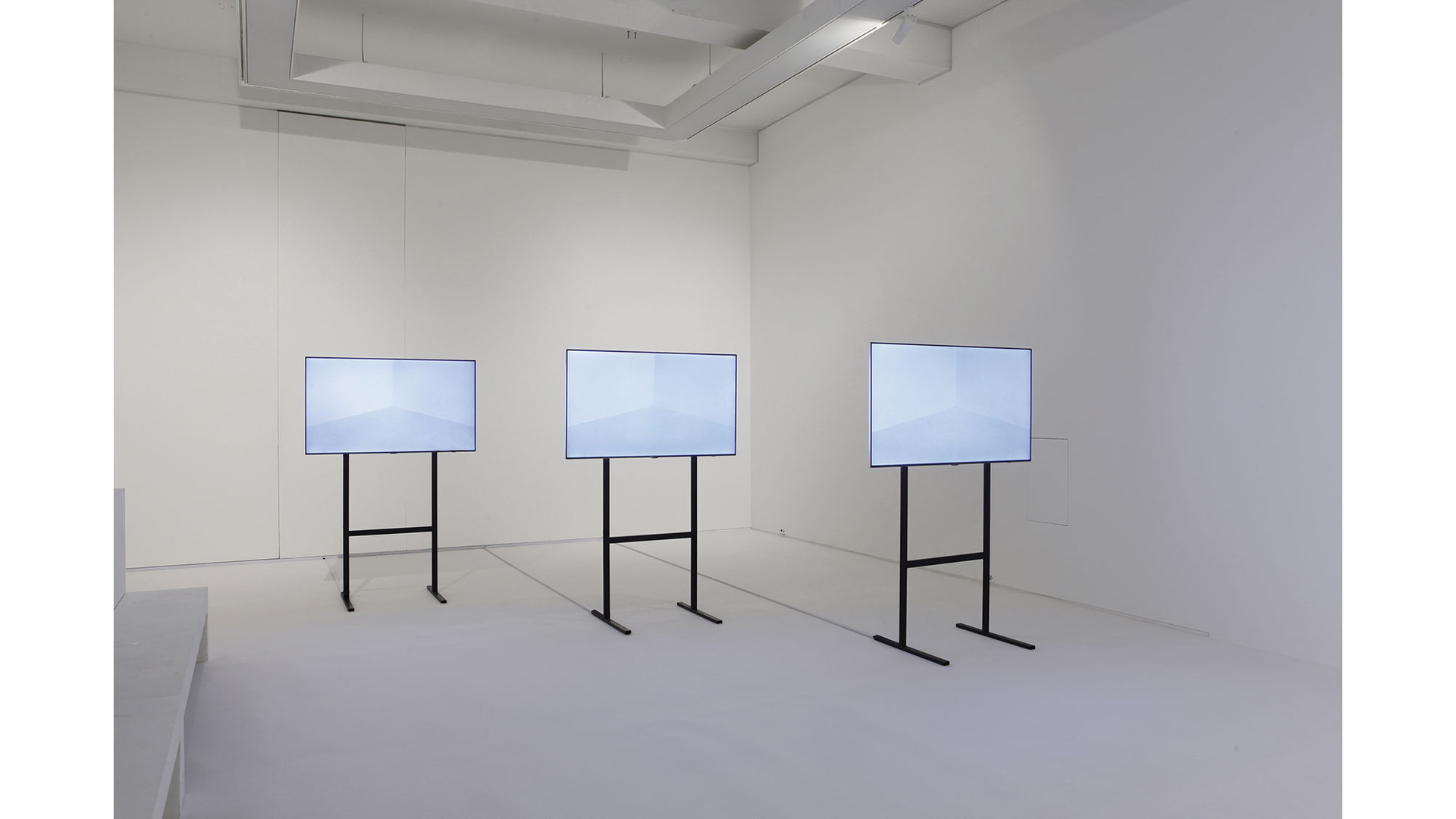 Installation view of Uncommon Sense, Salon de H, 2015